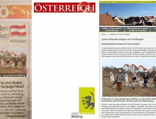 Lamas und Alpakas Go Tageszeitung